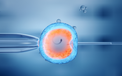 Embryo Selection and IQ